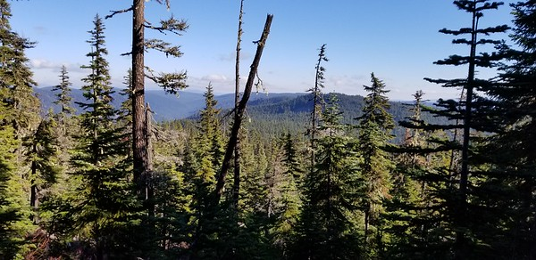 Looking east while climbing the east end of Rimrock trail - looking over the Shellrock creek drainage
