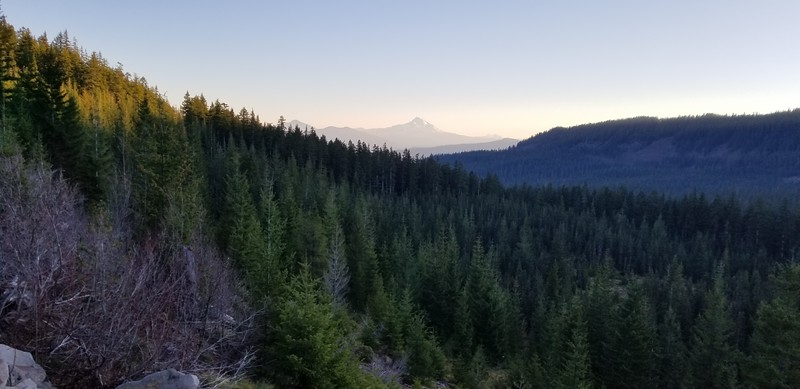 Mt Jefferson from 5830-210 Spur road