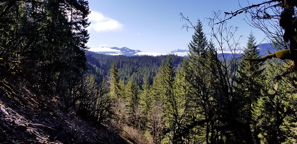 I think this is Oak Grove Butte - or it could be Granite Peaks - the peak to the right is Schreiner - looking south southeast from the rockslide on the Cripple Creek Trail