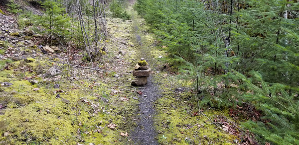 A rock cairn that someone built right in the middle of the trail - Fish Creek