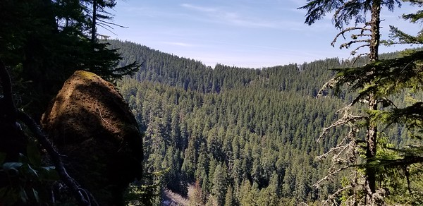 View from cool little knob on the ridge down from South Fork Mountain - looking North/Northwest
