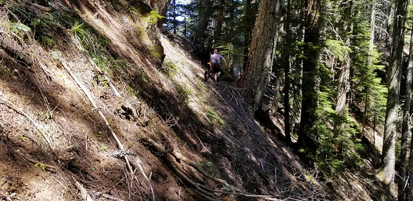 The steep side hills on the explorations for the Wanderers Peak Trail