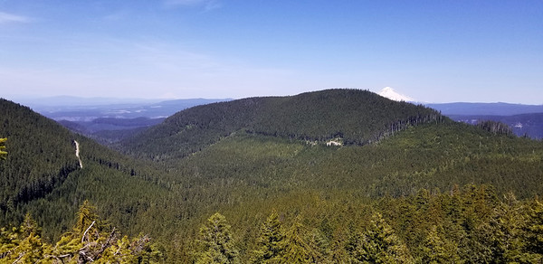 Looking north to Mt Hood from knob on the ridge down from South Fork Mountain