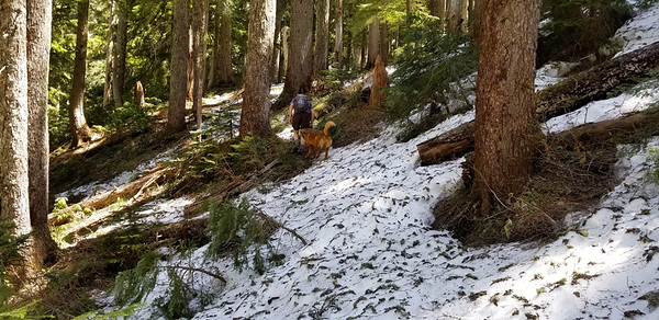 The snow on the trail up to South Fork Mountain
