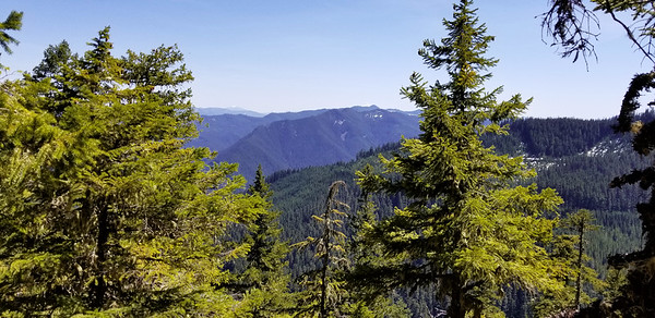 Cool little knob on the ridge down from South Fork Mountain - Looking south - Olallie Butte and the top of Mt Jefferson are visible