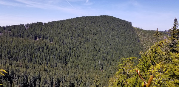 Looking North back to the hill above Memaloose Lake - Un-named - from ridge down from South Fork Mountain