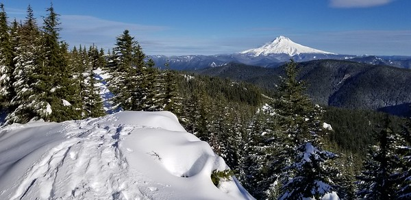 Mt Hood from the top of Squaw Mountain