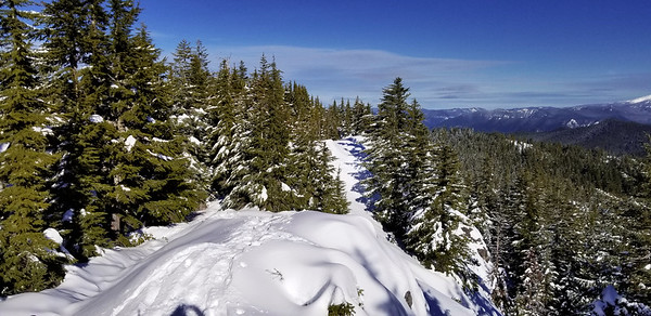 Looking north up the ridge on Squaw Mountain