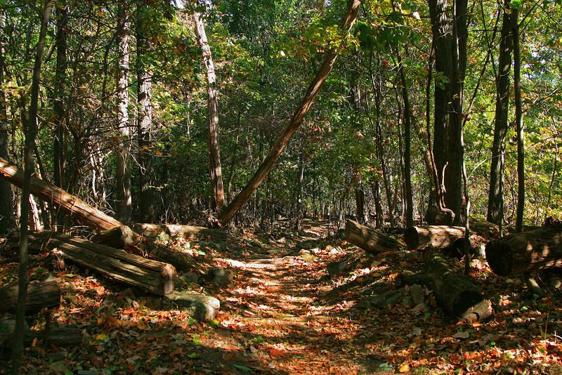 03  Appalachian Trail