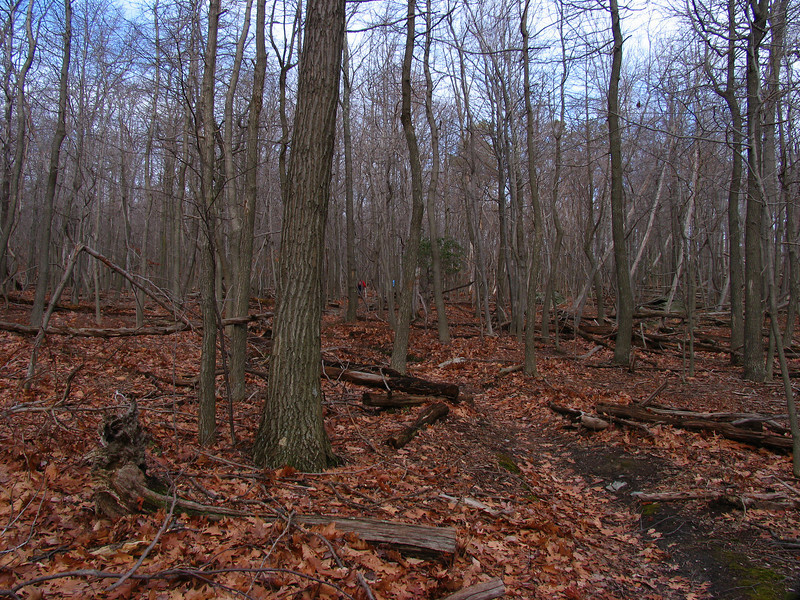 18 Old Misery Trail_leads to Hunting Creek Lake