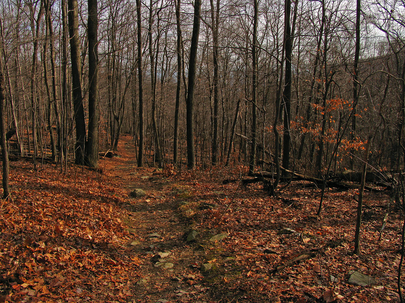03 Catoctin Trail_Hunting Creek Valley
