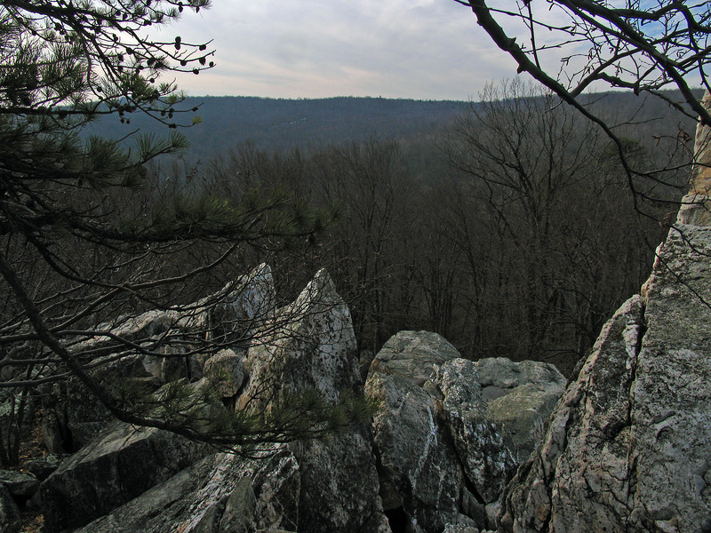 17 Cat Rock summit view to south_1562ft