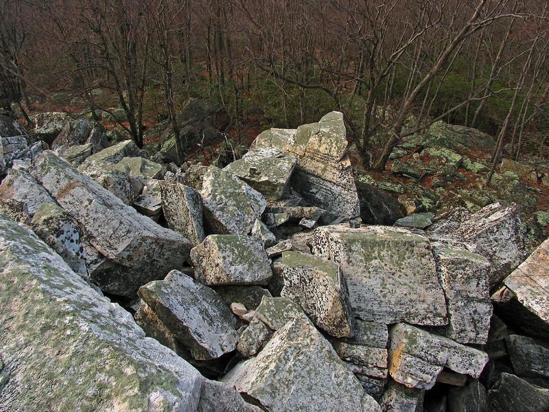 14 Cat Rock Quartzite boulders