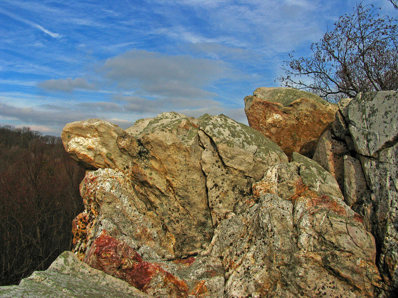 11 Cat Rock summit_Catoctin greenstone interspersed by white quartz