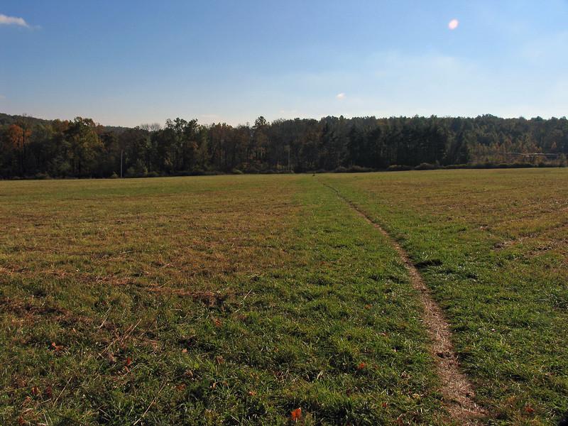028 Trail crosses field approaching Md  77 (Foxville Rd crossing)