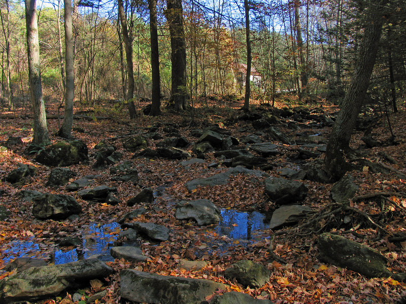 027 Little Antietam Creek flowing down through Raven Rock Hollow