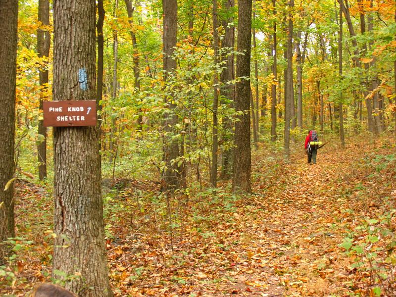050 Peggy takes blue-blazed trail to Pine Knob Shelter