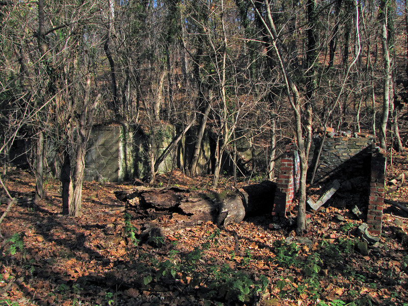 02 Potomac Refining Co  ruins (manganese)