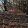 19 Ann_Leaf-covered C&O Canal towpath