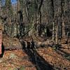 03 Potomac Refining Co  ruins (manganese)
