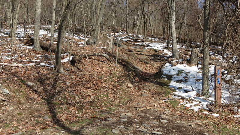 50 Blue-blaze Stone Fort Trail leading to the summit