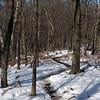 70 Stone Fort Trail along Maryland Hgts ridge