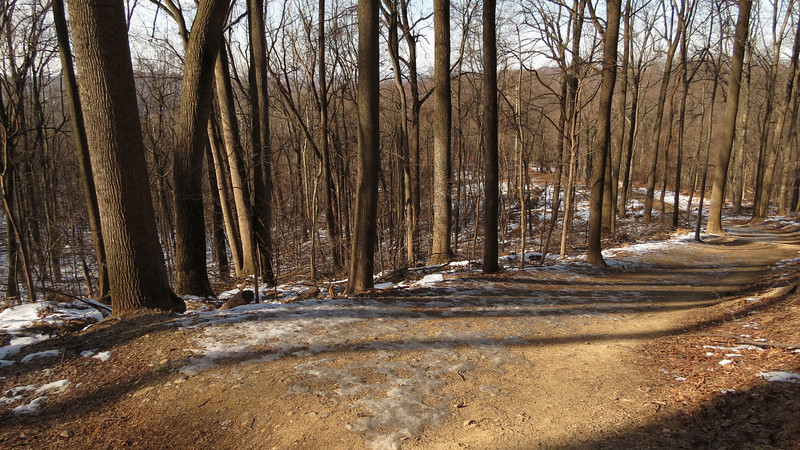18 Sunny gradual sloped section of Md Hgts Trail