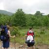Looking toward Mt. Rogers