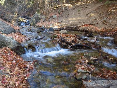 Beautiful creek framed by fall.