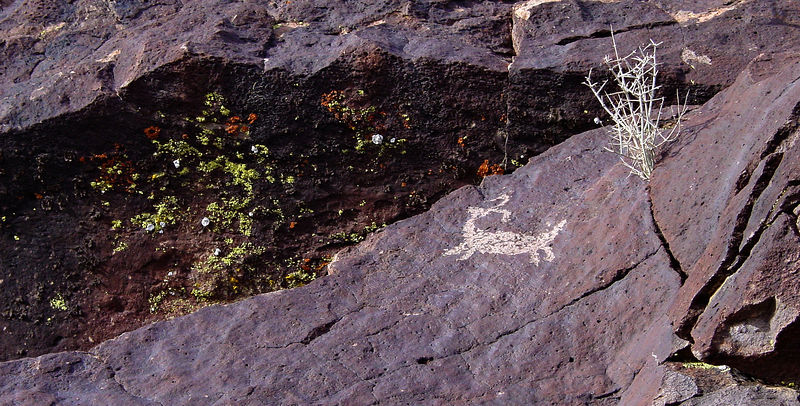 Dark desert varnish on the gray rock is what makes the petroglyphs stand out.