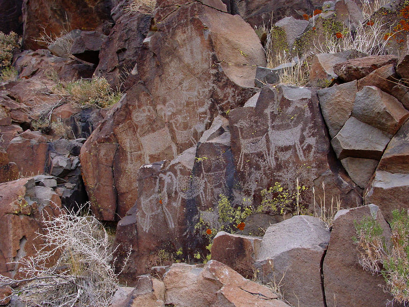 Big horn sheep were a sought after food source and it is thought the petroglyphs may have been related to the hunt.