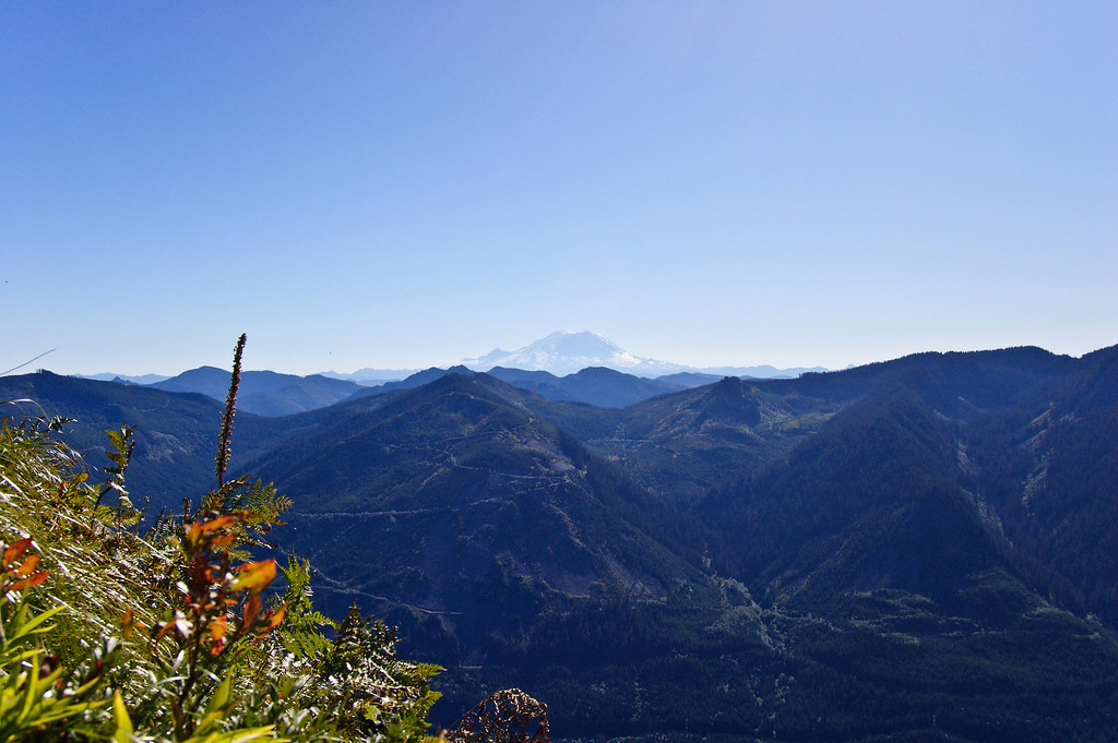 Mt. Rainier from Bandera Mountain