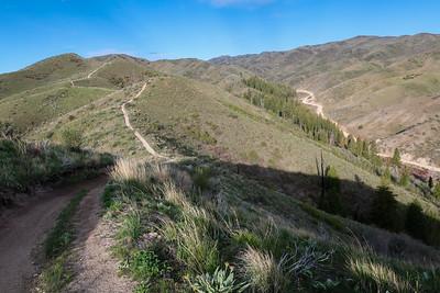 The ridge track parallels Blacks Creek road.