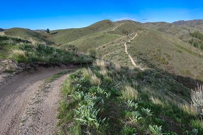 The undulating ATV track on the ridge.