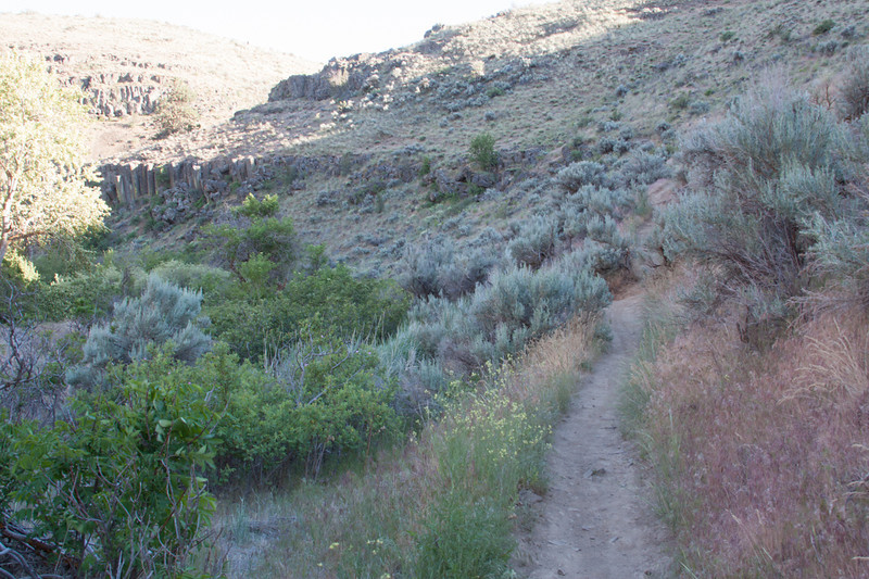 Cowiche Canyon Uplands Trail and Vinyard Trail