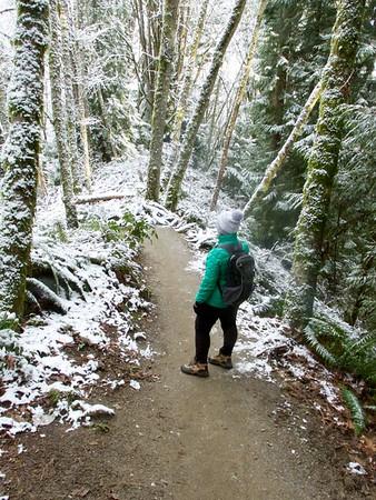 Evans Creek Preserve January 2, 2017