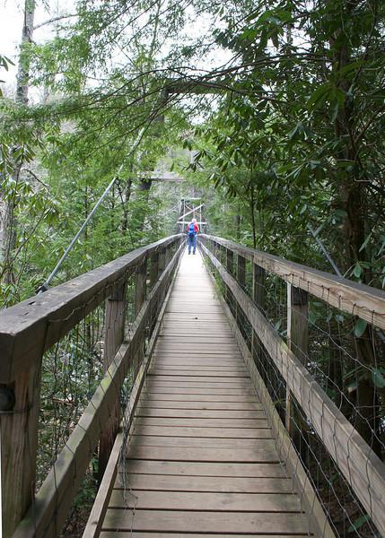 3/6/09 - The 270 foot suspension bridge that crosses the Toccoa River