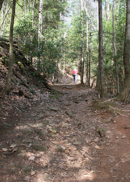 Hiking a portion of Section 6 of the Benton MacKaye Trail to the waterfall