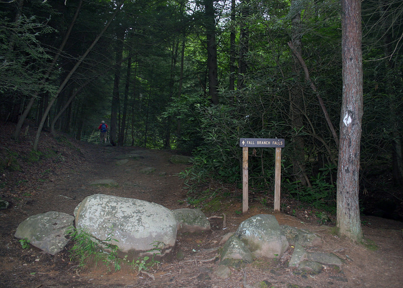 Starting on the trail