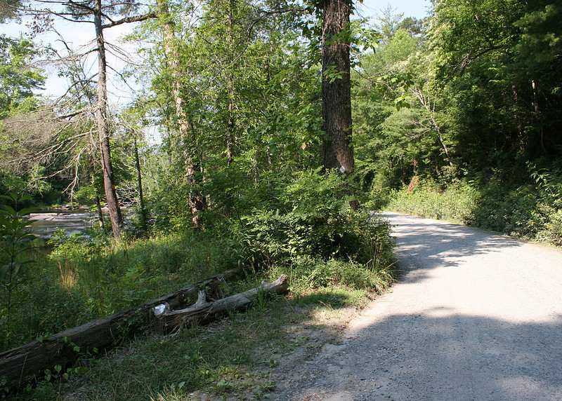 The walk to the Shallowford Bridge is along a road which runs along the Toccoa River