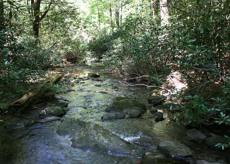 Chester Creek