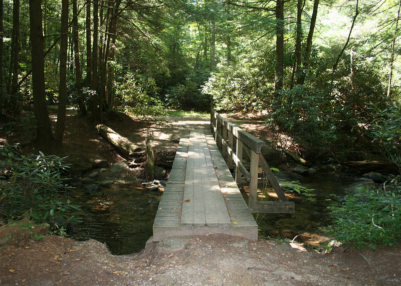 Bridge over Chester Creek