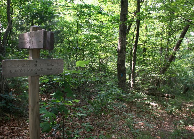 Duncan Ridge/Benton MacKaye Trail sign