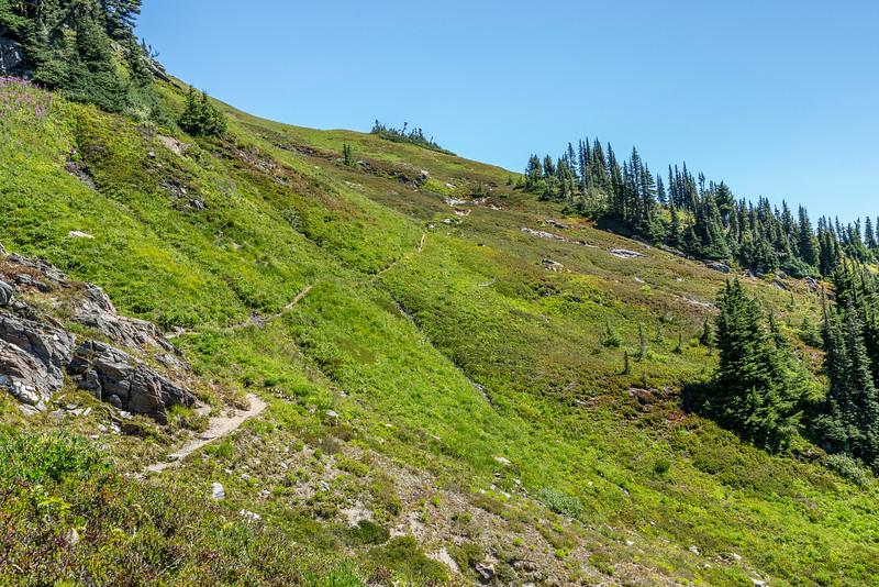 Foam Creek Trail