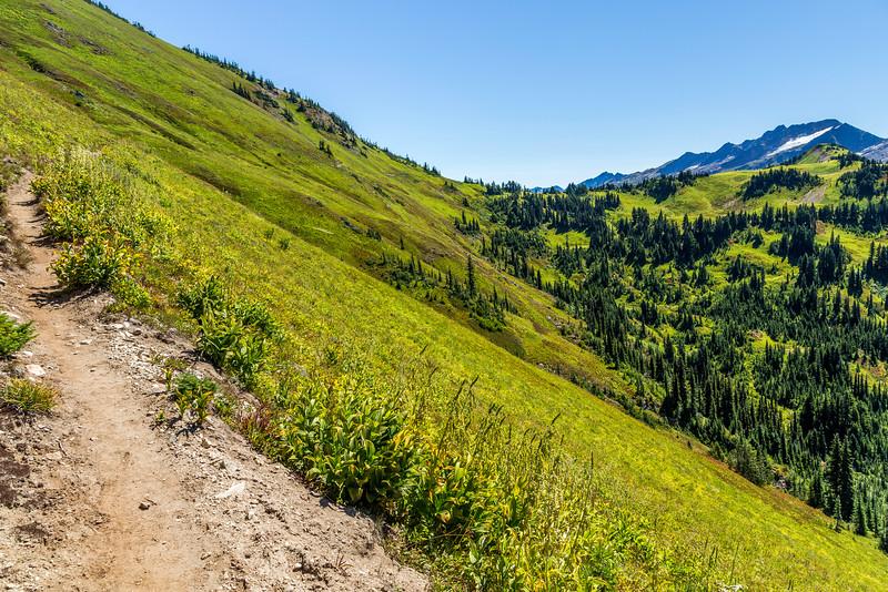 North Fork Sauk Trail to White Pass