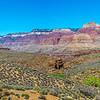 Grand Canyon 3-29-21 PP_V9A9357-Pano