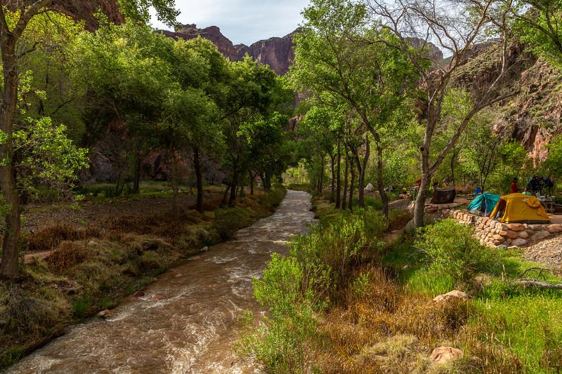 Grand Canyon 2019 Day 2_V9A5854-2