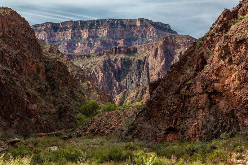 Grand Canyon 2019 Day 2_V9A5861