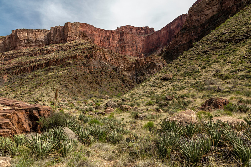 Grand Canyon 2019 Day 2_V9A5954