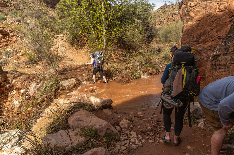 Grand Canyon 2019 Day 2 water crossing_V9A5965